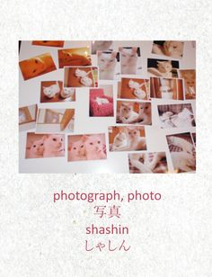 photo - shashin