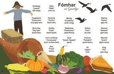 Season    #Kaytria Stauffer #Saotharlann Irish Gaelic Language, Gaelic Irish, Luck Of The Irish, Study Motivation, Autumn Theme, Doodles, Languages, Irish Humor, Ireland