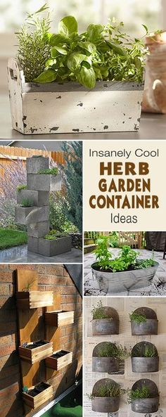 Insanely Cool Herb Garden Container Ideas • Lots of ideas and tutorials!