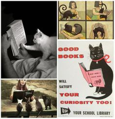 Cat Thursday---The best things...ever. Cats and Books