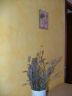 Casa della Lavanda, holiday home near Barga http://accommodationintuscany.co.uk