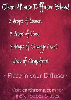 Try this Clean House Essential Oil Diffuser Blend to help kill airborne bacteria and make your house smell like it was just cleaned. 3 drops of Lemon Essential Oil. 2 drops of Lime Essential Oil. 2 drops of Orange Essential Oil. 1 drop of Grapefruit Essential Oil. Place in your diffuser and enjoy. Visit http://www.earthroma.com/ for more recipes.