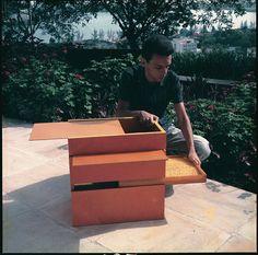 Hélio Oiticica with B11 Box Bólide 9 1964. Carnegie Museum of Art. DESDÉMONE…