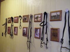 Family Wall.  Took old pics of family in country settings (horses, cattle, etc) - copied in sephia tone and framed. Then, I used porcelain door knobs as hooks to hang up my old horse tack..