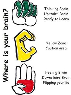 Oct 16, 2019 - This Pin was discovered by Erin Harrison. Discover (and save!) your own Pins on Pinterest The Brain For Kids, Whole Brain Child, Yoga For Kids, Social Skills Activities, Brain Activities, Physical Activities, Brain Based Learning, Social Emotional Learning, Brain Models