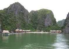 http://goviettravel.com/uploads/2014/12/Bungalow-on-Nam-Cat-Island.jpg