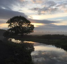 """This photograph was taken by Joey Mullineux during a morning commute into work in Muchelney Somserset. This weeks theme for #englandsbigpicture is """"end of the summer holidays""""  join in and send your photographs to england@bbc.co.uk #england #picoftheday #photosofbritain #ukpotd #capturingbritain #commuting #sunrise #nature #mist"""