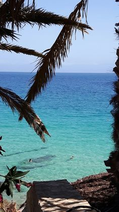 Can't wait for Fuerteventura Ocean Photography, Am Meer, Canario, Canary Islands, Story Of My Life, Strand, Holiday Ideas, Wanderlust, Around The Worlds