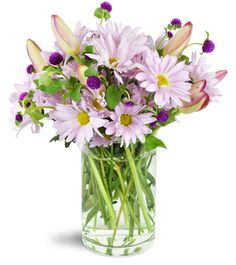 Want to send a big smile? Lively lavender daisies are a brilliant plan! A  touch of tulips add a chic, sophisticated element to this charming  gift.Lavender daisies, mauve tulips, and more are arranged in an elegant cylinder vase - ready for your special someone!