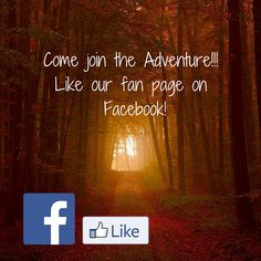Wilderness, Connection, Journey, Neon Signs, Facebook, The Journey