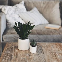 Wood; Pot plants; Cushions; Neutral colours.
