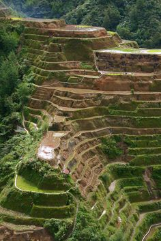 UNESCO World Heritage Site - Banaue rice terraces, Philippines Cordilleras. carved out of the hillside by Ifugao tribes people 2000 to 3000 years ago without the aid of machinery. Banaue, Les Philippines, Philippines Travel, Baguio Philippines, Laos, Places To Travel, Places To See, Places Around The World, Around The Worlds