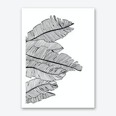 """Fine art print printed with water-based inks on cotton mix archival art paper . • Available in multiple sizes • Trimmed with a 2cm / 1"""" border for framing • Available framed in white, black and oak wooden frames. Tags: illustration, botanical, nature Ink Illustrations, Illustration Art, Art Sketches, Art Drawings, Stylo Art, Leaf Drawing, Black Pen Drawing, Black And White Art Drawing, Art Sketchbook"""