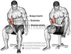 Biceps leg curl exercise