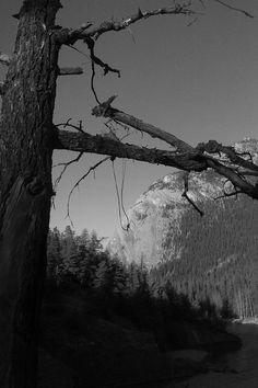 Banff, Alberta Banff Alberta