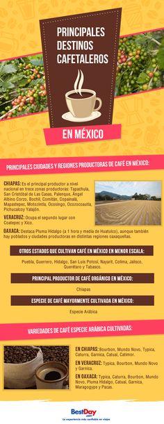 Principales destinos cafetaleros en México