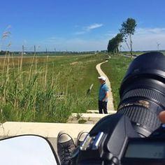 eelcovandekamp Boven op een heuveltje (met m'n camera en m'n reflectiescherm en een onderwerp) #fromwhereistand #dag7 #synchroonkijken