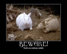 killer rabbit | by raquelly111 (The Killer Rabbit of Caerbannog from Monty Python and the Holy Grail) Tim: Well, that's no ordinary rabbit..//  King Arthur: Ohh..//  Tim: That's the most foul, cruel, and bad-tempered rodent you ever set eyes on!.//  Sir Robin: You tit! I soiled my armor I was so scared!.//  Tim: Look, that rabbit's got a vicious streak a mile wide! It's a killer! ☺♥