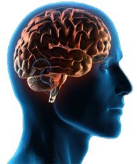 Learn about Huntington's Disease.