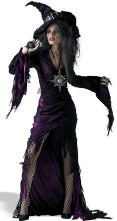 Sorceress Sexy Witch Costume I think I could pull this off !