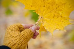 As the weather grew cooler and my hands started to freeze a little bit, I realized that my first ever crochet project  is not quite so w...