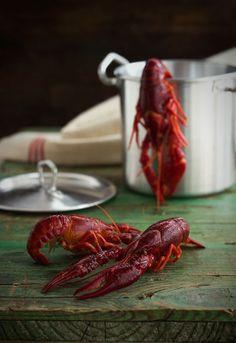 Receta 657: Manera de cocer los cangrejos de río »  1080 recetas de cocina, de Simone Ortega