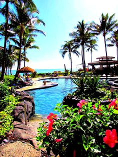 Marriotts Waiohai Beach Club Timeshare Resort Features Local Activities And Specials Enjoy All That Kauai Has To Offer