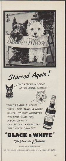 """Description: 1952 FLEISCHMANN vintage print advertisement """"Starred Again"""" -- Starred Again ! """"We Appear In Scene After Scene, Whitey!"""" """"That's Right, Blackie! You'll Find Black & White Scotch Whisky Whenever The Part Calls For A Scotch With Quality And Character That Never Change.""""  -- Size: The dimensions of the half-page advertisement are approximately 5.25 inches x 14 inches (13.25 cm x 35.5 cm). Condition: This original vintage half-page advertisement is in Excellent Condition unless…"""
