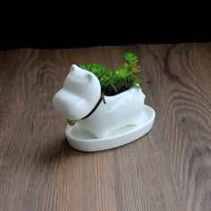 1pc Cartoon Hippo Ceramic Succulent Plant Pot with Tray Decorative Bonsai Planter Porcelain Flower Pot Home Garden Decor
