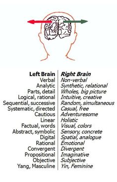 "Left and Right brain functions. Don't take this as a ""Are you right or left brained?"" post. It is actually an untrue idea, as we all use both sides of our brains equally."