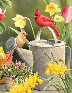 Susan Bourdet Garden Delights Cardinals is part of Susan Bourdet Garden Delights Cardinals In Dyi - In this beautiful gallery wrapped canvas, Susan Bourdet has painted a colorful pair of cardinals perched on a watering can in a garden of yellow daffodils Pretty Birds, Love Birds, Beautiful Birds, Bird Pictures, Pictures To Paint, Decoupage, Image Nature, Motifs Animal, Cardinal Birds