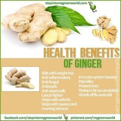☛ Do you eat Ginger root?  The health benefits of Ginger are numerous.  ❥ Relieves Nausea  ❥ Anti-Inflammatory  ❥ Immune System Booster  ➸ Mix 1 tsp of ginger juice in half a cup of warm water.  You can also mix ginger with 1tbsp of raw honey to help with sore throats and cold.  ✒ Share | Like | Re-pin | Comment
