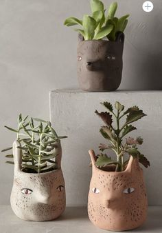anthropologie forest critter pots.