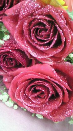 I want to give my teenager some pink glitter roses because she's into sparkly things and Hello Kitty. I could probably dip some fake pink or fuschia roses in pink glitter.