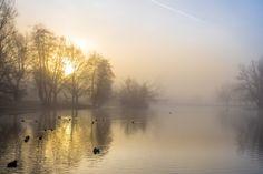 Sunday morning in the park by Werner Hofmann on 500px #sunrise #mist #fog #landscape #photography #ducks #lake