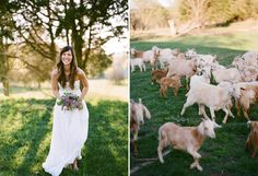 Country Farm Weddings | Posted by Ramie at 11:05 AM