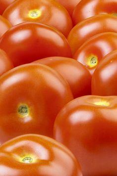 Tomaatin ravintosisältö/100g: energiaa 84 kJ/20 kcal,  hiilihydraattia 3,5 g,  rasvaa 0,3 g,  proteiinia 0,6 g,  kaliumia 290,0 mg,  magnesiumia 11,0 mg,  kalsiumia 9,0 mg,  fosforia 30,0 mg,  A-vitamiinia 66,8 µg,  C-vitamiinia 14,1 mg,  karotenoideja 4106,2 µg,  lisäksi pieniä määriä mm. E- ja K-vitamiinia, rautaa ja natriumia. Vegetables, Food, Essen, Vegetable Recipes, Meals, Yemek, Veggies, Eten