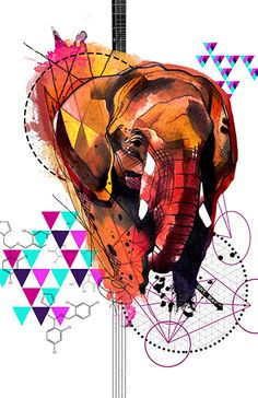 Fine art print of Elephant from my new line called RemixIT Design....a collaboration of my tattoo work remixed with digital illustrations from my partner-in-art, T.A.D.pole. It can be purchased at my website at:   http://www.ivanatattooart.com/print-store.html  or use this link for the open stock pieces:  http://www.ivanatattooart.com/Open-Stock-Shopping-Cart.html