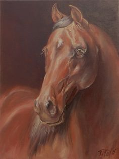 HORSE Equestrian Art ORIGINAL oil painting on by CanisArtStudio