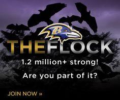 Baltimore Ravens   Home