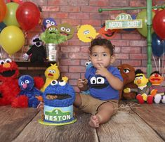 Sesame Street Cake Smash, Cookie Monster, Elmo, Big Bird, Bert & Ernie, Cake Smash, 12 month photos Elmo First Birthday, 1st Birthday Pictures, Birthday Cake Smash, Baby Birthday, 1st Birthday Parties, Birthday Ideas, First Birthday Photography, Cookie Monster Party, Elmo Party