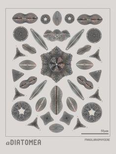 MRK: Prints by MRK , via Behance