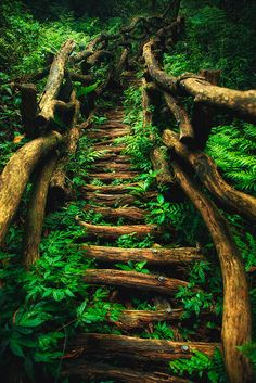 22 Ideas Fantasy Landscape Nature Paths For 2019 Beautiful World, Beautiful Places, Beautiful Pictures, Landscape Photography, Nature Photography, Travel Photography, Photography Classes, Photography Ideas, Photography Backdrops