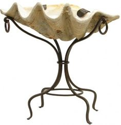 Giant clam shell and stand - great for bottled drinks on the patio!