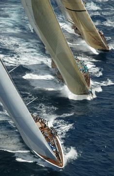 Velsheda at Antigua Classic by Dykstra Naval Architects ZsaZsa Bellagio: guys