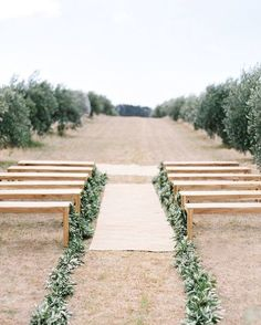 Sometimes a simple garland can change your entire ceremony look. Here the couple lined the wooden benches with olive branch garlands to match the surrounding olive grove. We love how the space is instantly transformed from simple to special with this little green addition. Visit the link in our profile to see more of a round up of greenery inspired ideas we created for @ebay.  Photo by: @josevilla  #oncewedstyle #weddingceremony #outdoorwedding