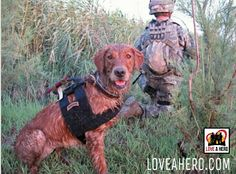 "Currently deployed to Iraq to help find missing Americans, ""Recon"" is on a mission to search for soldiers along the Euphrates River. No one gets left behind.  http://loveahero.com #LoveAHero #brave #brothers #army #america #afghanistan #courage #dutycalls #freedom #family #hero #honor #love #marines #military #navy #pride #patriot #respect #supportourmilitary #soldier #supportourtroops #troops #thankyou #usa #veteran #victory #warrior #sisters"