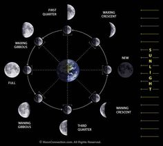 ARTICLE: Moon Phases Tied to Sleep Cycles