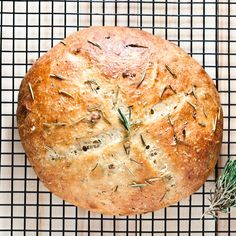 Rustic Rosemary Garlic Bread – Chew Out Loud This Rosemary Garlic Bread recipe has a golden crust and chewy soft middle. It's better than restaurant bread. Taste and see for yourself… Rosemary Garlic Bread Recipe, Rosemary Recipes, Rosemary Potatoes, Roasted Garlic, Mashed Potatoes, Kitchenaid, Best Bread Recipe, Chewy Bread Recipe, Artisan Bread Recipes