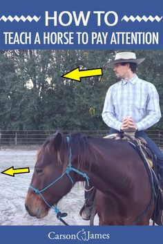 Here's a short video that reveals how to train your horse to pay attention and be focused on what you are focused on 100% of the time.